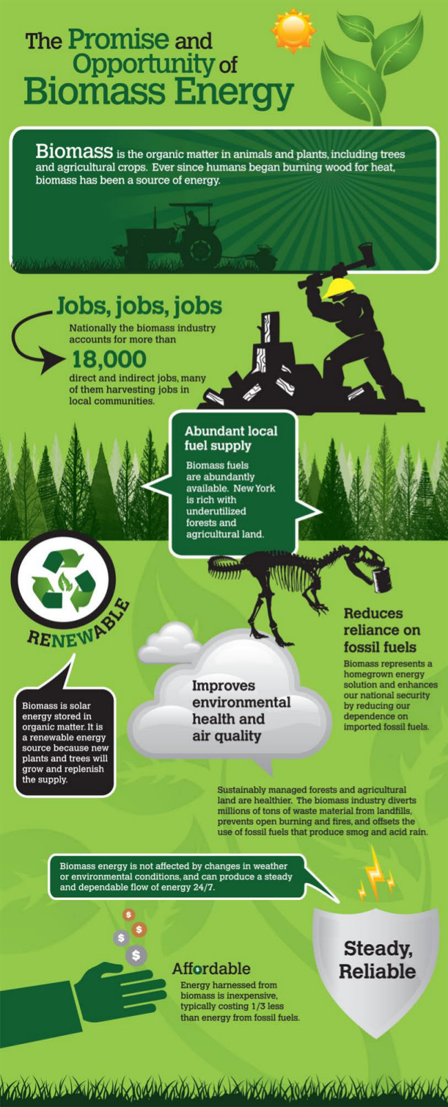Biomass Renewable Energy ~ Biomass pros and cons apecsec