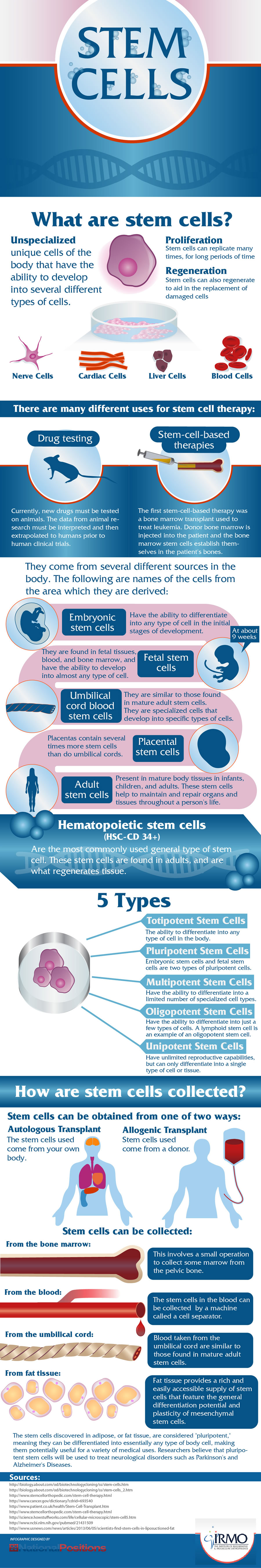 Stem Cell Research Explained
