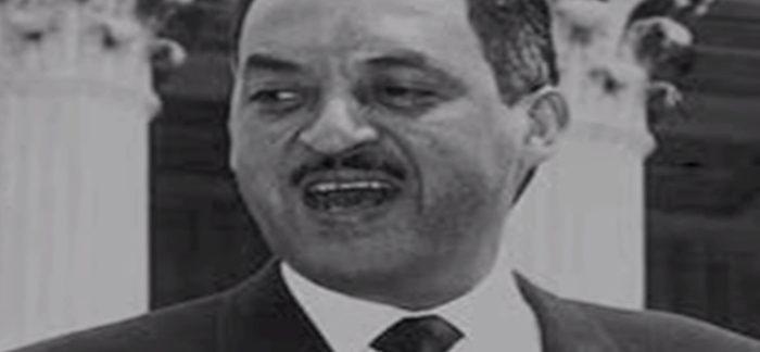 Fun Facts About Thurgood Marshall
