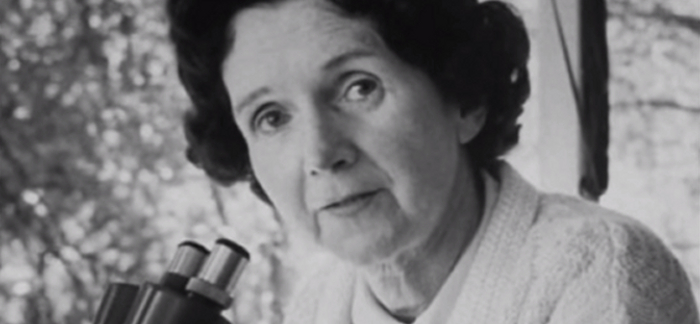 Interesting Facts About Rachel Carson