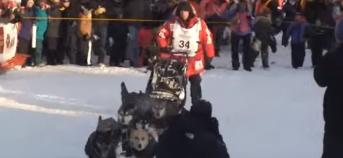 15 Important Facts About the Iditarod