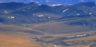 5 Pros and Cons of Drilling in ANWR